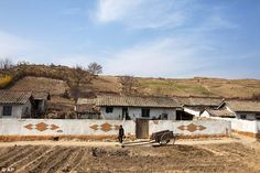 A communal farm compound near Kaesong, North Korea, Associated Press photographer David Guttenfelder,