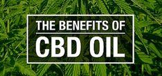 CBD Products for Medical Marijuana Patients