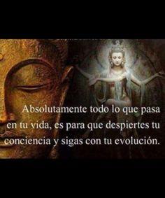 Abdel Castillo Abdelcastillo22 En Pinterest