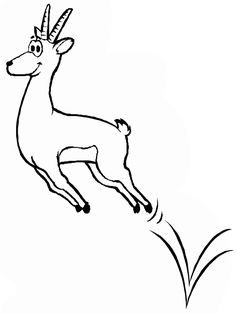 Gazelle Google Search Line Drawings For Literacy Pinterest - chamois animal coloring pages