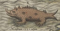 antique sea monster drawings - Google Search