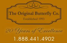 live butterfly releases for weddings, funerals, memorials, and plantable seed paper favors Butterfly Party Favors, Butterfly Kit, Butterfly Wedding, Unique Wedding Favors, Unique Weddings, Wedding Ideas, Victoria Memorial, Seed Paper, Holidays And Events