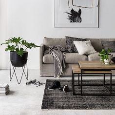 Weekend relaxing..... @indiehomecollective New rugs & planters in store. Coming online soon. #indieliving #wearepampa