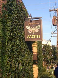 Meddlesome Moth Dallas, TX  D BEST