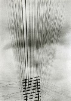 Tina Modotti, Telephone wires, 1925