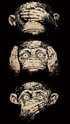 Free Monkey Faces Wallpaper For Your Phone