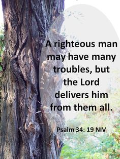 A righteous man may have many troubles, but the Lord delivers him from them all. Psalm 34: 19 NIV / BIBLE IN MY LANGUAGE