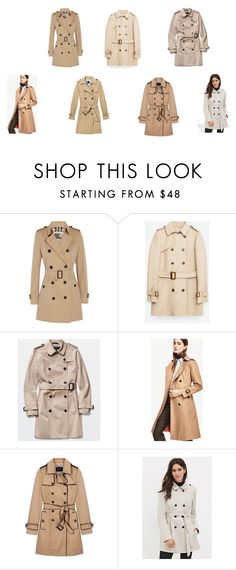 """""""Classic Trench Coat"""" by pauladerda on Polyvore featuring Burberry, Zara, Ann Taylor, Gap, Banana Republic, Forever 21, women's clothing, women, female and woman"""