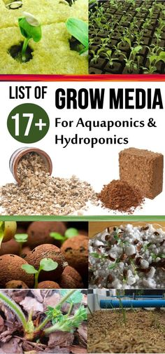 Top 17 Grow Media for Hydroponics & Aquaponics [Pros & Cons] Different components are blended to create homemade and commercial growing media. Different types of growing media are used to cultivate various plants. Choosing the right growing medium is an e Aquaponics System, Hydroponic Farming, Hydroponic Plants, Hydroponic Growing, Aquaponics Diy, Indoor Hydroponics, Aquaponics Greenhouse, Permaculture, Organic Gardening