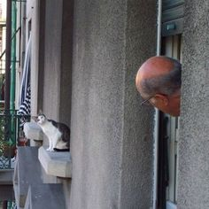 I wonder what they are thinking!