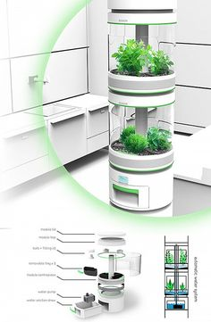 Hydroponic Gardening Ideas Personal Hydroponics Inspired by larger vertical farming systems, Stem is an indoor modular appliance used for growing small plants. Indoor Farming, Hydroponic Farming, Indoor Vegetable Gardening, Indoor Hydroponics, Urban Gardening, Aquaponics System, Farming System, Aquaponics Diy, Aquaponics Greenhouse
