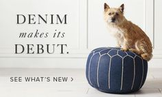 Upholstered Living Room Chair - Find What You Love   Serena & Lily