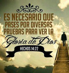 Es necesario que pases por diversas pruebas para ver la Gloria de Dios. Hc 14.22
