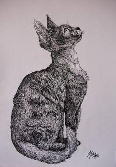 Devon Rex by MisiasArt
