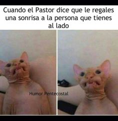 Sonrisas Funny Christian Memes, Christian Humor, Christian Life, Christian Quotes, Funny Facts, Funny Jokes, Funny Images, Funny Pictures, New Memes
