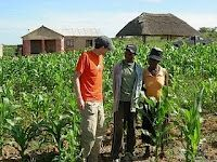 Garden planted after the well was installed at the Rock Church, Zimbabwe