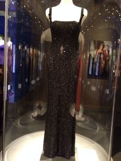 Lady Diana 's evening gown