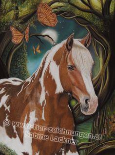 """""""Manapi Aponi"""" Pferdeportrait / Pferdezeichnung in Pastellkreide von Sabine Lackner Horseportrait / Horsepainting in pastels by Sabine Lackner Tierzeichnungen / Tierportraits Animalpainting / Animalportrait"""