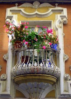 ❥metal balcony with a flower filled window box❥