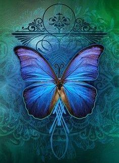 Butterfly Blue ~ by Kuschelirmel