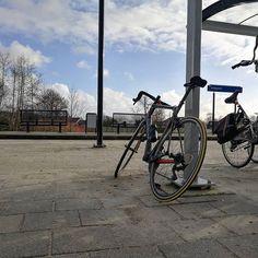 #Vanmiddag heb ik een mooie tocht op mijn #fiets gemaakt.over het Hogeland. Ik kwam o.a. door Usquert Warffum en Pieterburen. Het waaide hard vandaag windkracht 5/6 vanuit het westen/noordwesten. Bij thuiskomst toch een voldaan gevoel mede omdat ik ook vandaag een paar #strava #stravakoms had gescoord  (18-03-19) / #wielrennen #sporten Bekijk ook eens de website van Tjerk: www.TjerkBos.com