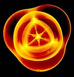 """La Cimatica è la scienza che studia come la vibrazione può generare forme: il suono influisce sulla materia e produce modelli geometrici che variano a seconda delle diverse frequenze; è famosa l'asserzione di Pitagora per cui """"la geometria è musica solidificata""""."""