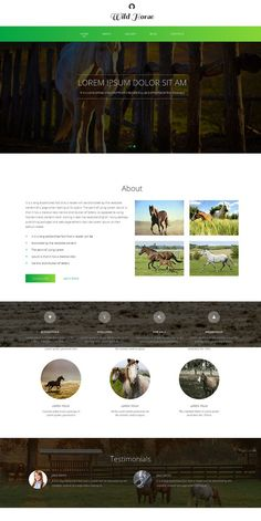 Wild Horse Responsive One Page Theme. HTML/CSS Themes. $12.00