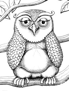 coloring pages for men 162 Best Coloring Pages for MEN images | Coloring pages, Colouring  coloring pages for men