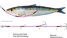 Tackle dode vis