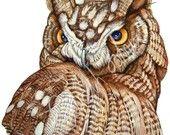 Great Horned Owl A4 digital print Great Horned Owl, Owls, A4, Digital Prints, Bird, Animals, Decor, Fingerprints, Animales