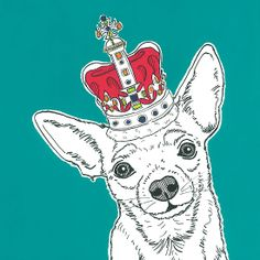Chihuahua In A Crown