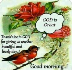 Good Morning Prayer, Morning Blessings, Good Morning Picture, Good Morning Flowers, Good Morning Messages, Morning Prayers, Morning Pictures, Good Morning Images, Morning Msg