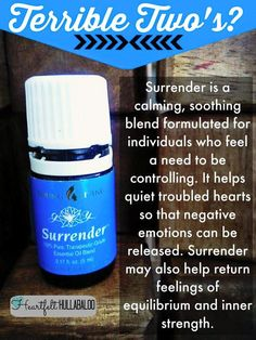 """Surrender """"Terrible Two's"""""""