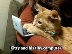 ~~ Where did he get that tiny little, itty bitty computer? Too Too Cute! ~~