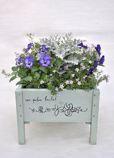 寄せ植え花壇の作り方 (プランター 鉢 画像 ブログ 方法 春 夏 花壇 diy - NAVER まとめ
