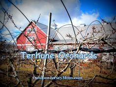 Terhune Orchards, Princeton, NJ | outdoorjerseymom.com