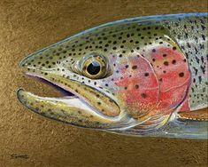 wild rainbow trout fish art