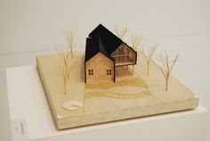 conceptMODEL: Photo / mas alla que una casa de dos aguas