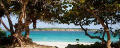 vieques <3, ok so i couldnt be from Lisboa - Why not Vieques then. This is my home for reals...