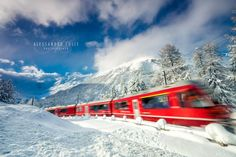 Trenino del Bernina by Alessandro Colle on 500px