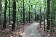 Hemlocks Bluffs Nature Preserve #Cary