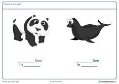 ¿Dónde habitan el oso y la foca? Rellena la ficha para  2º Primaria