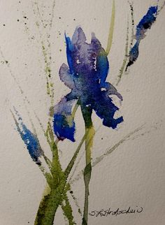 """Iris"" 10x7 watercolor, Sandra L Strohschein,"