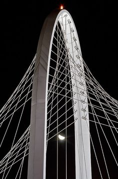 Ponte di Calatrava in RE [Santiago Calatrava Bridge] by ecatoncheires, via Flickr