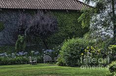 ETUDE GARDENS 2 PRINTS AND FRAMED ART FOR SALE JUDY WOLINSKY