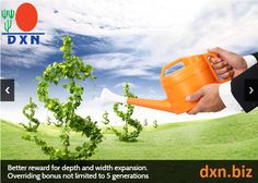 Pleasing 12 Elkepeszto Kep A Z Features Of Dxn Business Tablarol Marketing Wiring 101 Archstreekradiomeanderfmnl