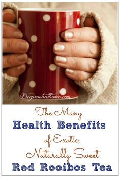 The Many Health Benefits Of Red Rooibos Tea. Beautiful hands holding a warm mug of Rooibos tea. Lemon Benefits, Health Benefits, Tea Benefits, Drinks Alcohol Recipes, Yummy Drinks, Health And Nutrition, Health And Wellness, Red Rooibos Tea, Antioxidant Supplements