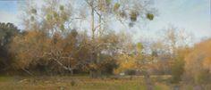 Ann Lofquist   Alamo Creek Sycamores, Evening