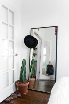 In my book, cacti can do no wrong and should be placed in any/all corners of a home.