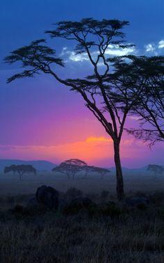 ✯ African skies